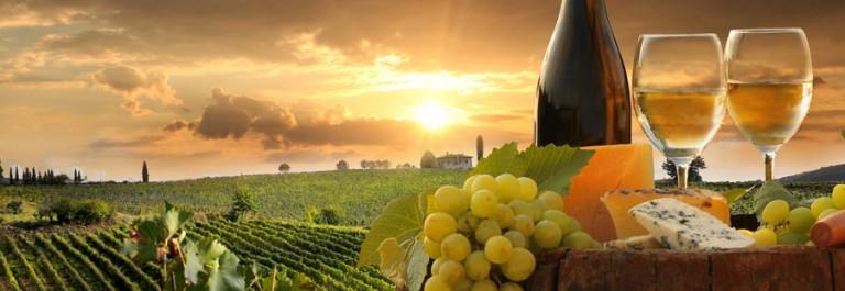 Artikelbild_Wein_Italien_Toskana