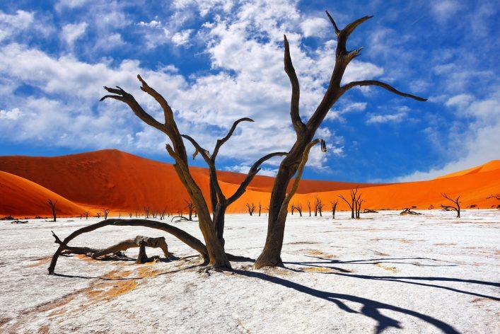 namibia salzwüste shutterstock_437288254