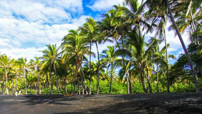 außergewöhnliche strände punaluu black sand hawaii