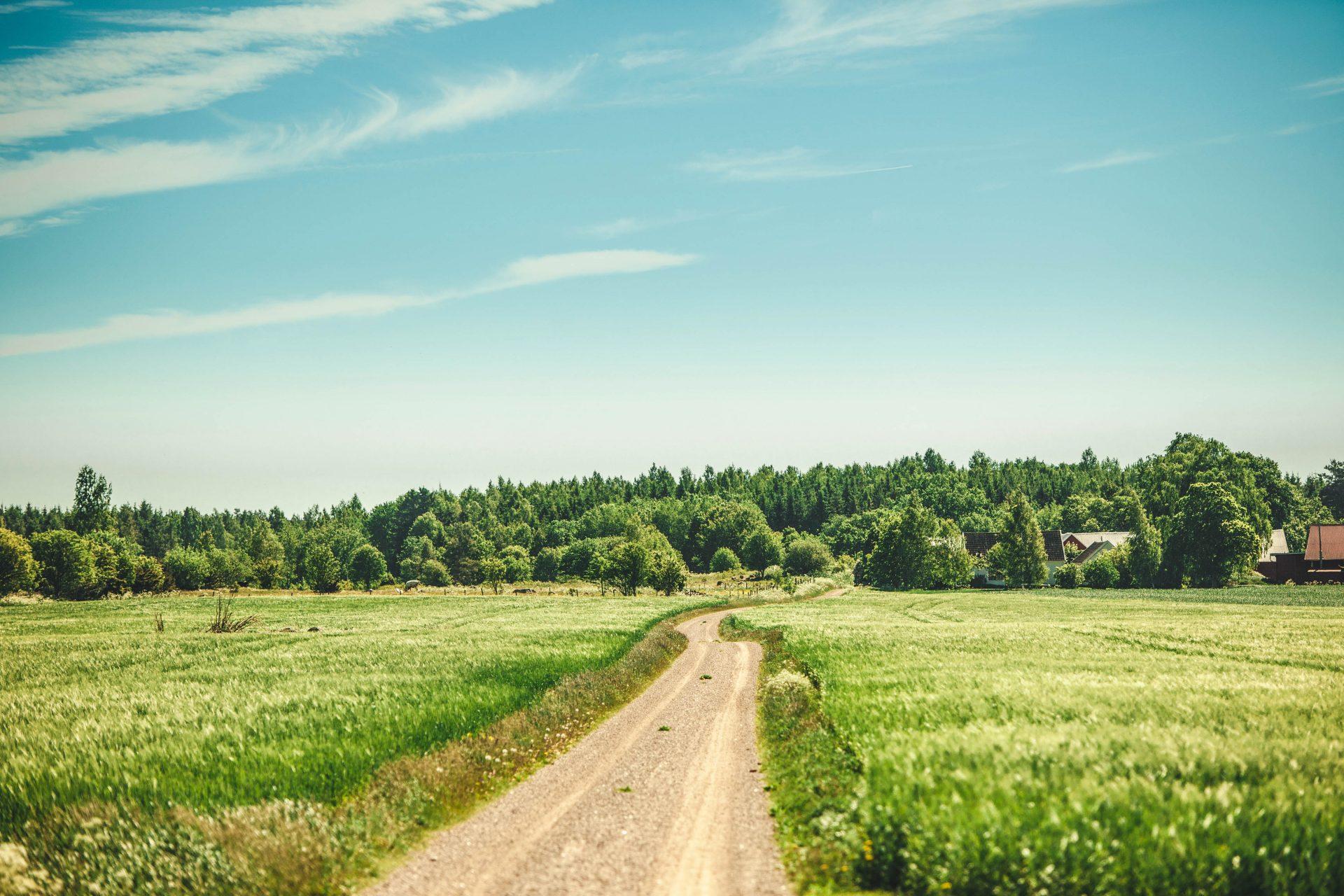 Eine Landschaft in Schweden