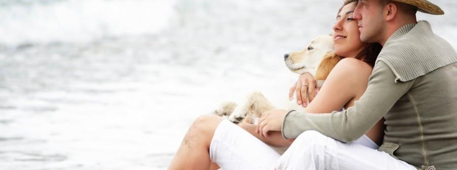 Urlaub mit Hund auf Rügen