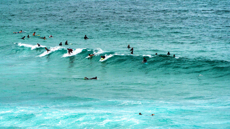 Noosa Festival of Surfing - ein Traum für Wellenreiter