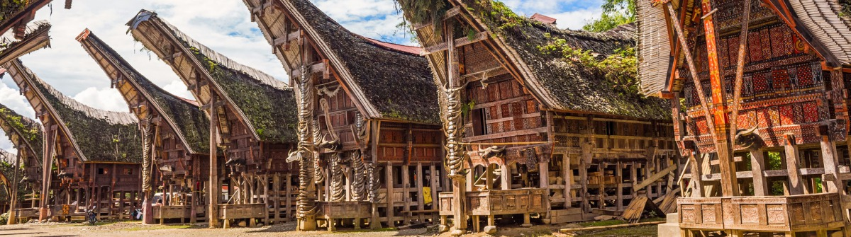 Tongkonans Torajan Ancestral Houses South Sulawesi Indonesia
