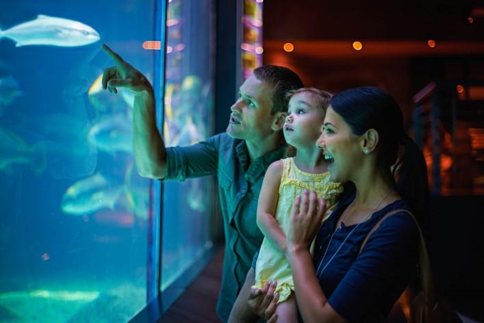 Die schönsten Zoos in Deutschland Aquarium