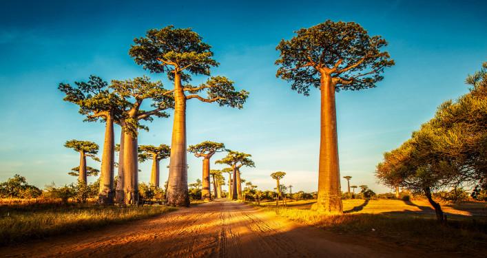 Madagaskar Tipps