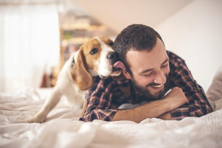 kostenlos Reisen Dogsitting