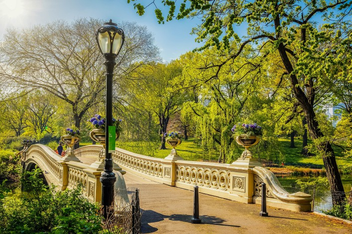 Bow bridge in Central park at sunny day, New York City shutterstock_265373498-2