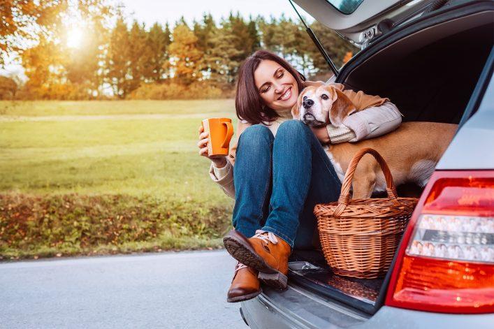 Urlaub mit Hund Auto