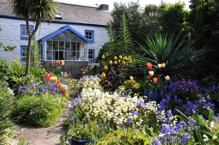 English Cottage, St Agnes, Scilly Isles, UK