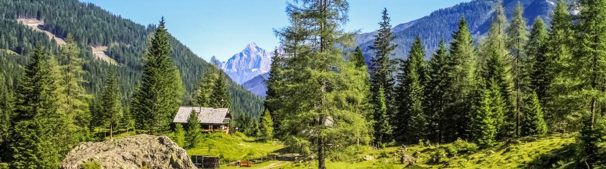 walk, St. Johann, Pongau, Austria shutterstock_384940699-2