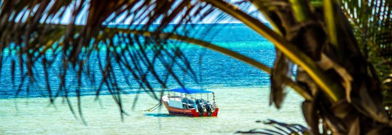 Kenia Strand Tauchen