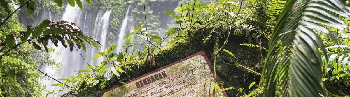 Air Terjun Tiu Kelep waterfall, Senaru, Lombok, Indonesia, South