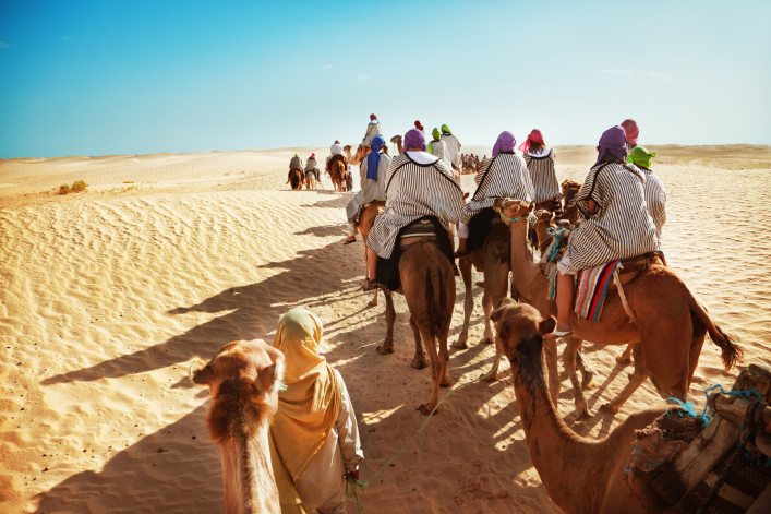 Camel Dessert Sahara iStock_000020596858_Large