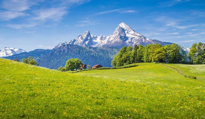 Bayerischer Wald shutterstock_337203401