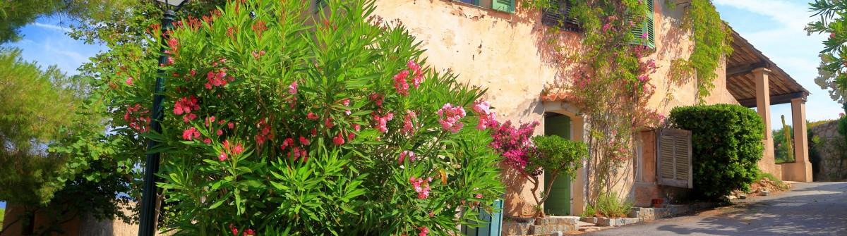 Saint Tropez France shutterstock_390994372
