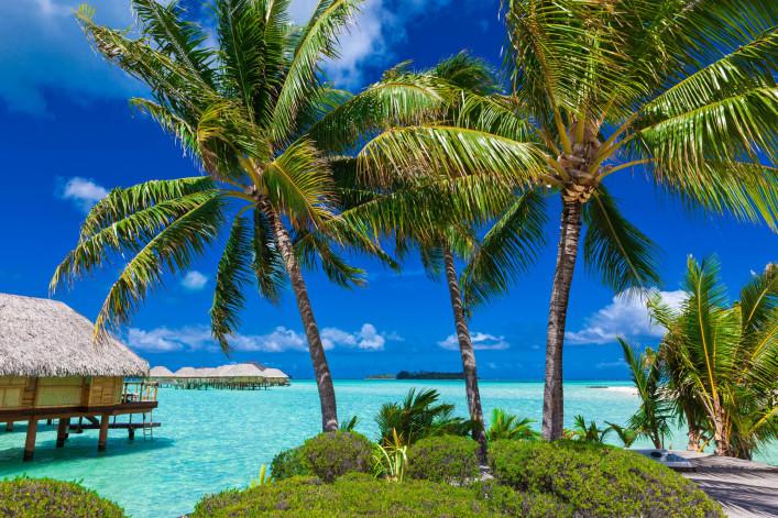 Tropical Island Paradise Bora Bora Tahiti iStock_000062909816_Large-2