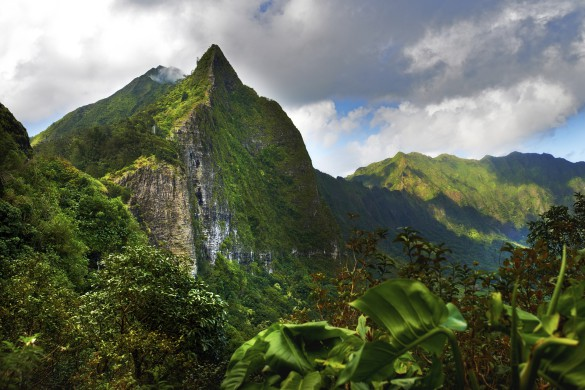 [Pali mountains, Oahu, Hawaii]