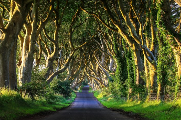 Game of Thrones Drehorte Irland
