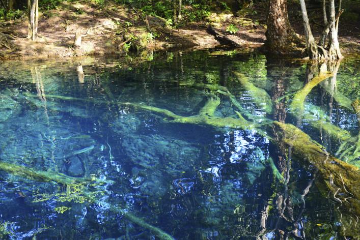 beautiful lake in the tropical jungle iStock_000080899349_Large