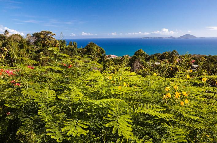 Caribbean Island Guadeloupe
