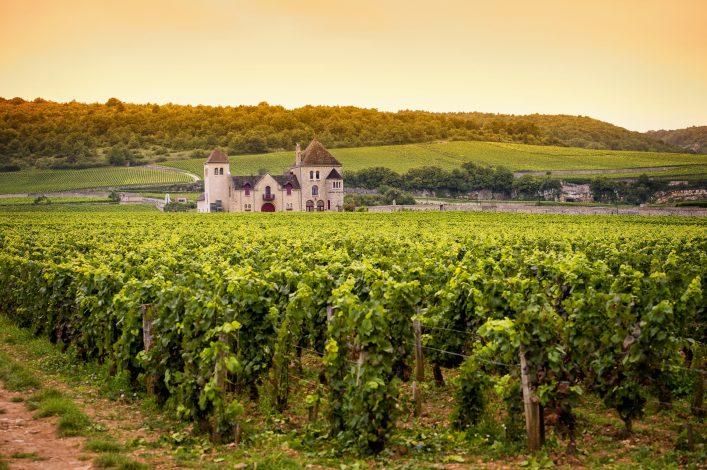 Burgund Hausboot Wein