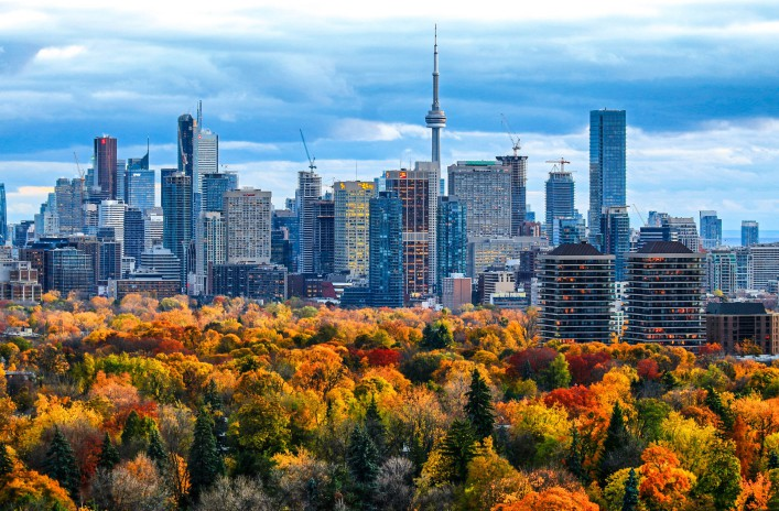 Toronto 2014 Fall Colors