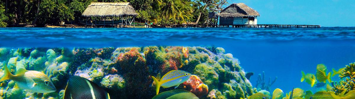 Underwater island
