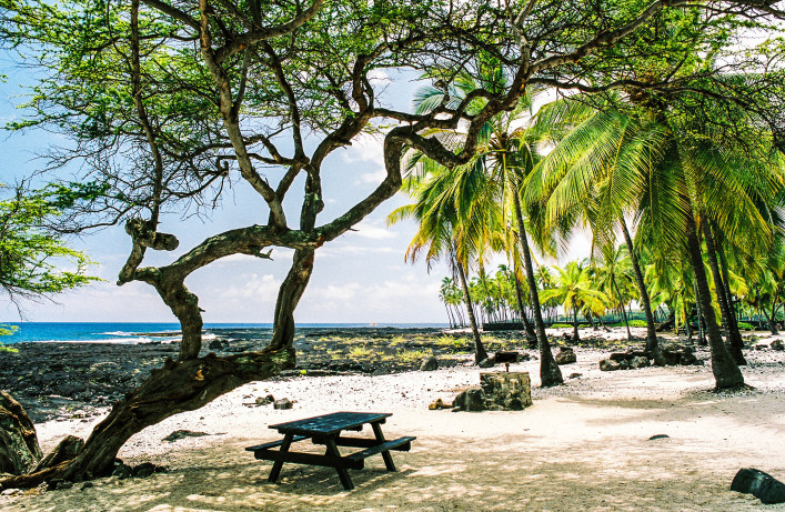 Big Island Hawaii Pacific Ocean beach picnic bench and area iStock_000003962771_Large-2