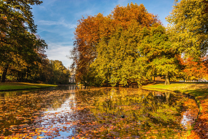 Herbst in Rotterdam iStock_000077774659_Large-2