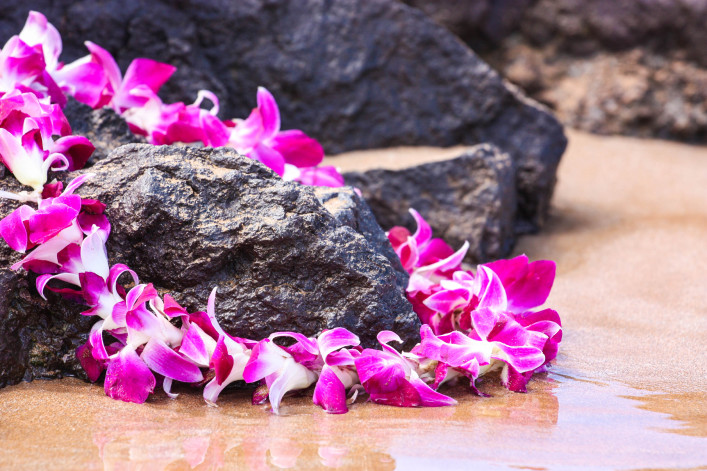 Lei on the Rocks iStock_000007228309_Large-2