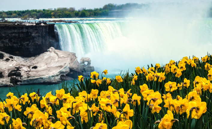 Niagara Falls Spring Flowers and Melting Ice