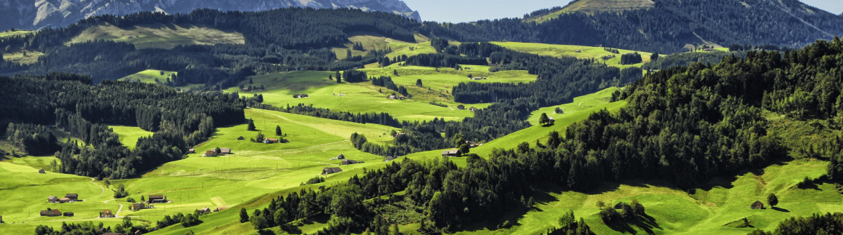 Appenzell Landscape iStock_000046022852_Large