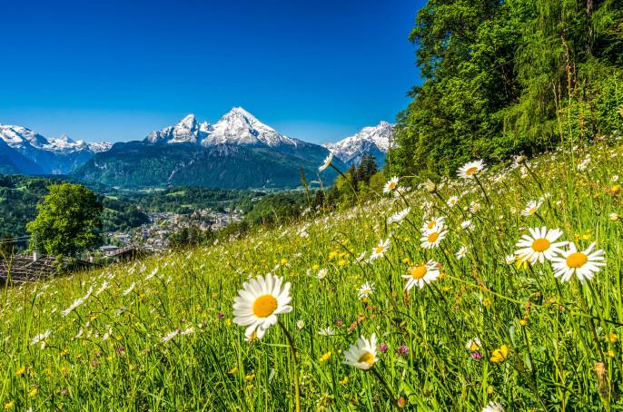 Bayerischer Wald Alpen shutterstock_318847859-2