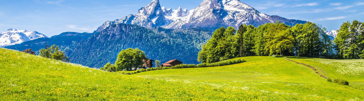 Alpenhotel Fischer