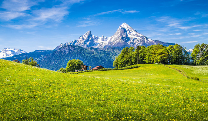 Bayerischer Wald shutterstock_337203401-2