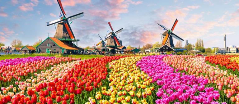 Urlaub in den Niederlanden