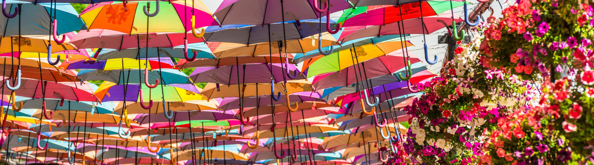 multicolor umbrellas roof in Dubai miracle garden shutterstock_422080381 EDITORIAL ONLY dvoevnore-2