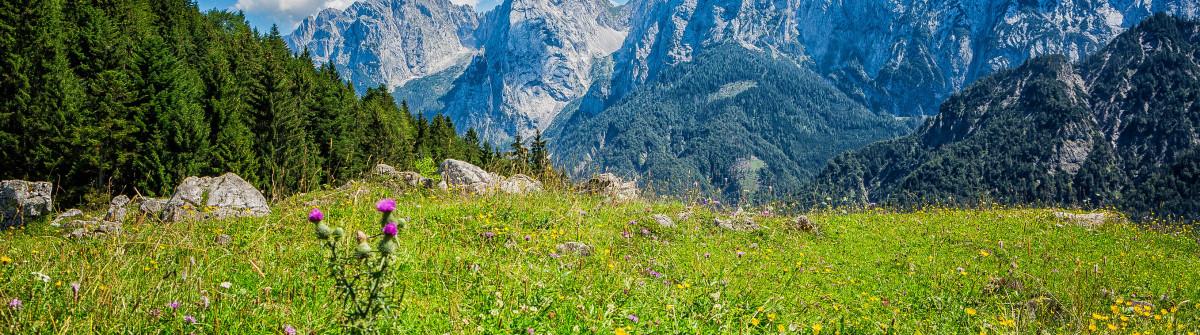 Wilder Kaiser Mountain Range, Austria