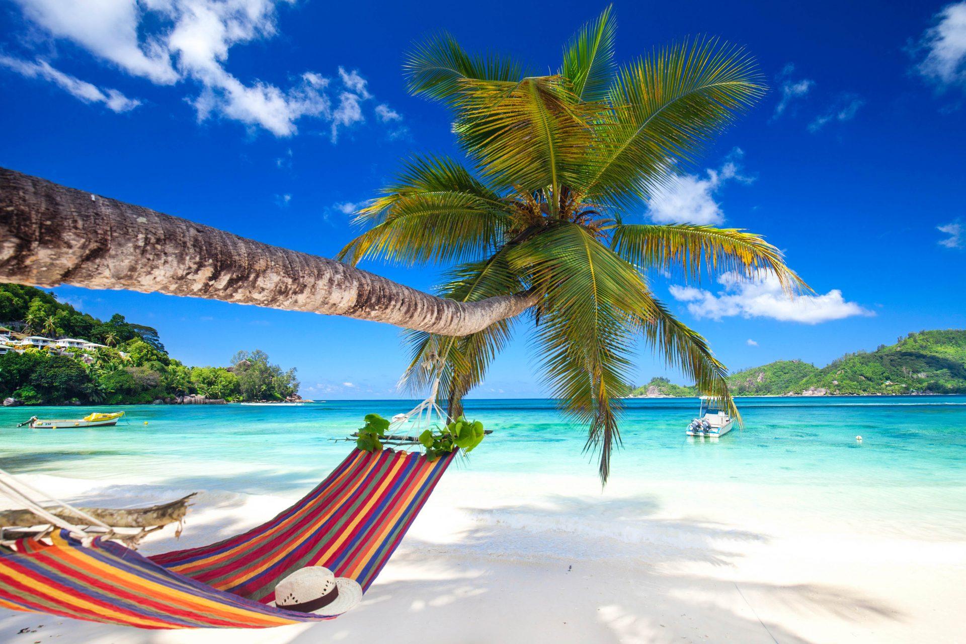 Hängematte in der Karibik