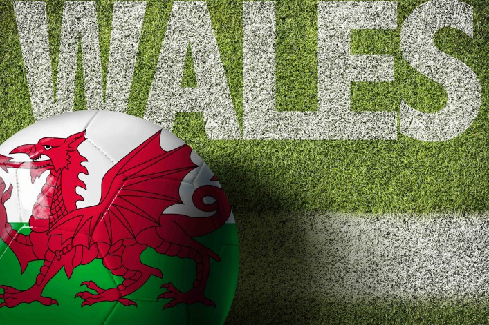 Wales Ball in a Soccer Field shutterstock_406131100-2