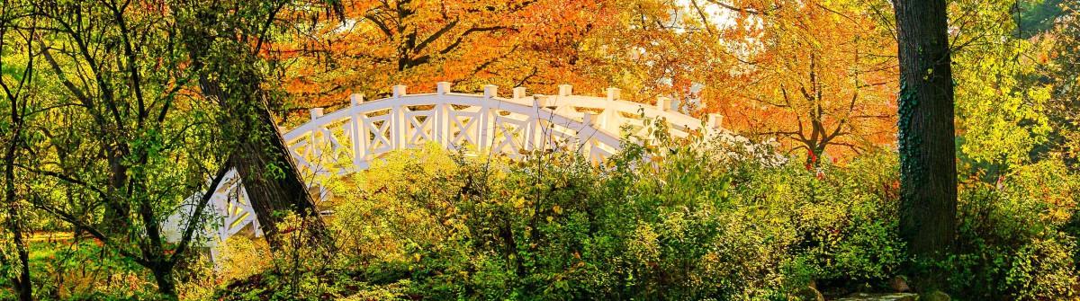 English Grounds of Woerlitz White Bridge shutterstock_87524896-2