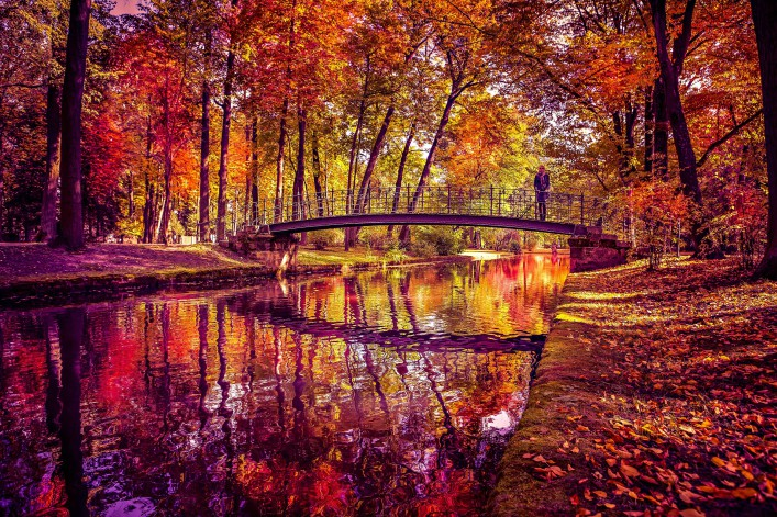 Old park in fall shutterstock_135614531-2