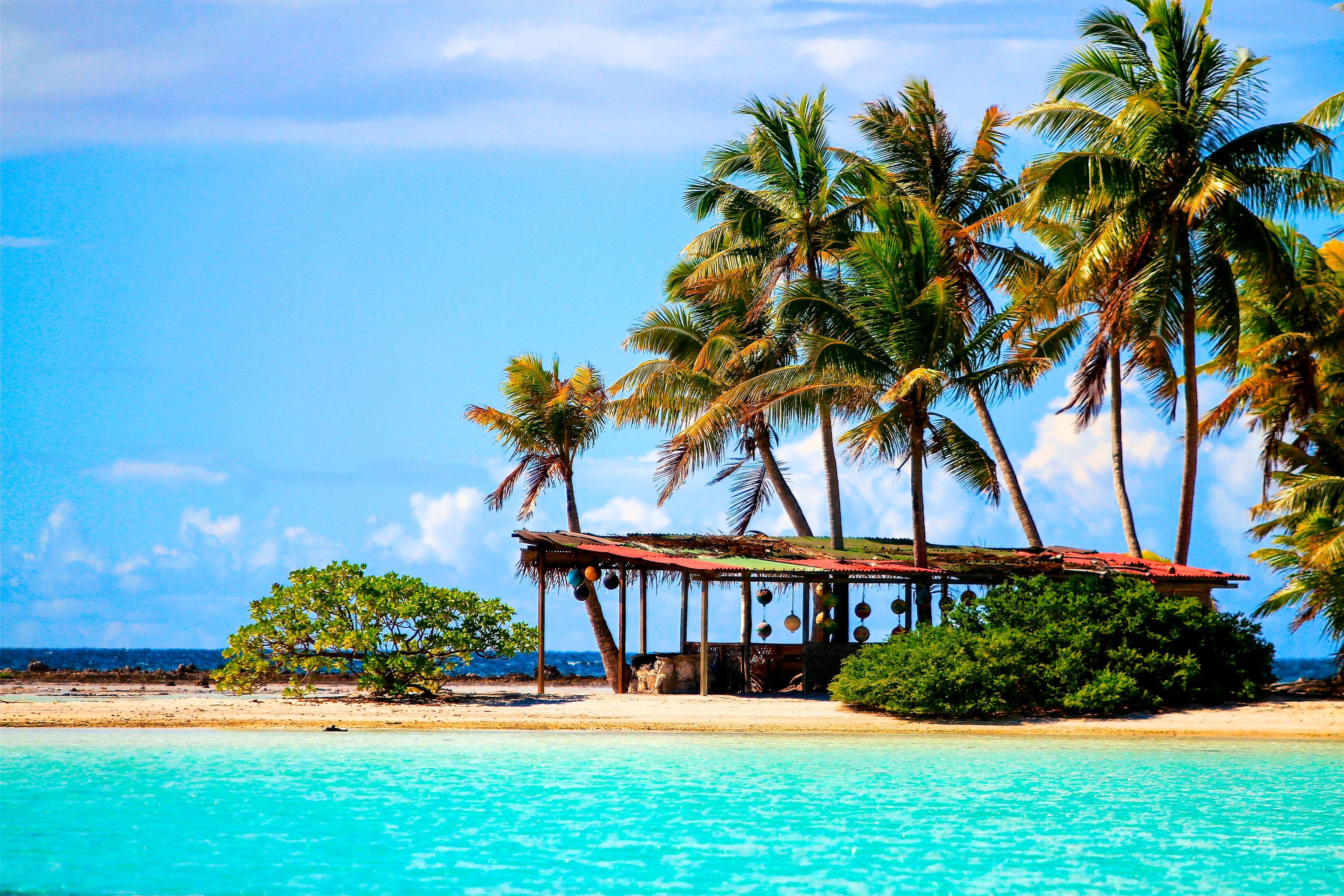 Moorea das insel juwel bei tahiti - Rangiroa urlaub ...