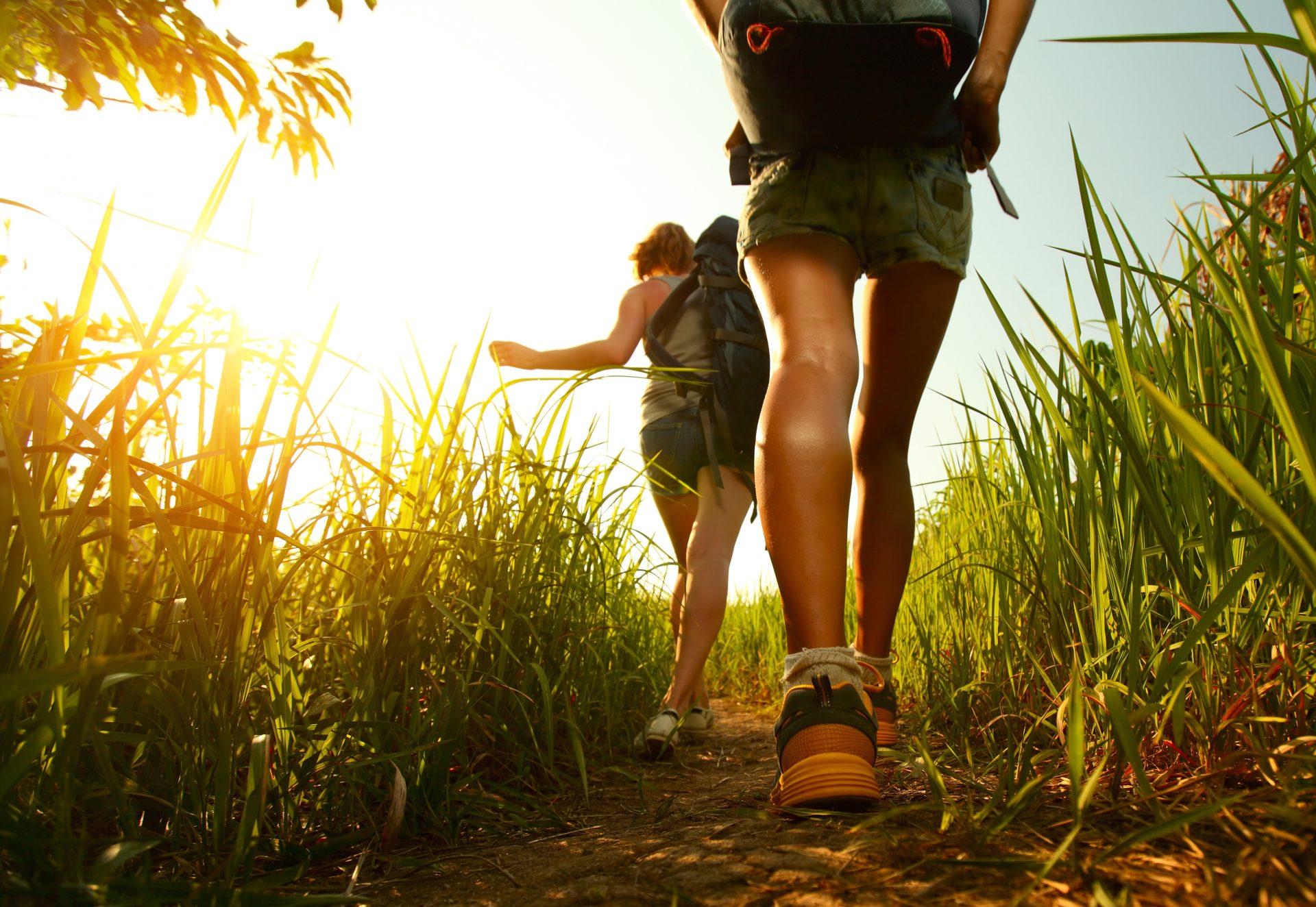 Umweltbewusst reisen Green Traveling