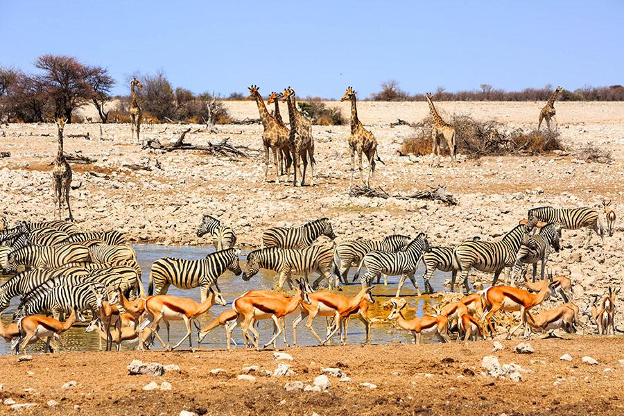 Quando andare nella Namibia