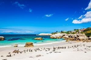 Vakantiebestemmingen Februari_Zonvakantie_Zuid-Afrika