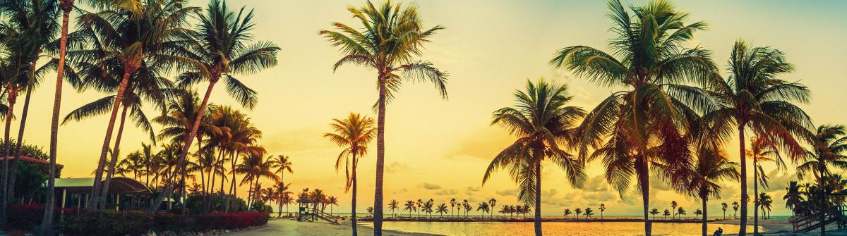 Adventskalender Urlaubsguru Miami