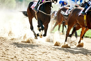 Vakantiebestemmingen_Augustus_Evenementen_Festivals_Palio di Siena Pferderennen