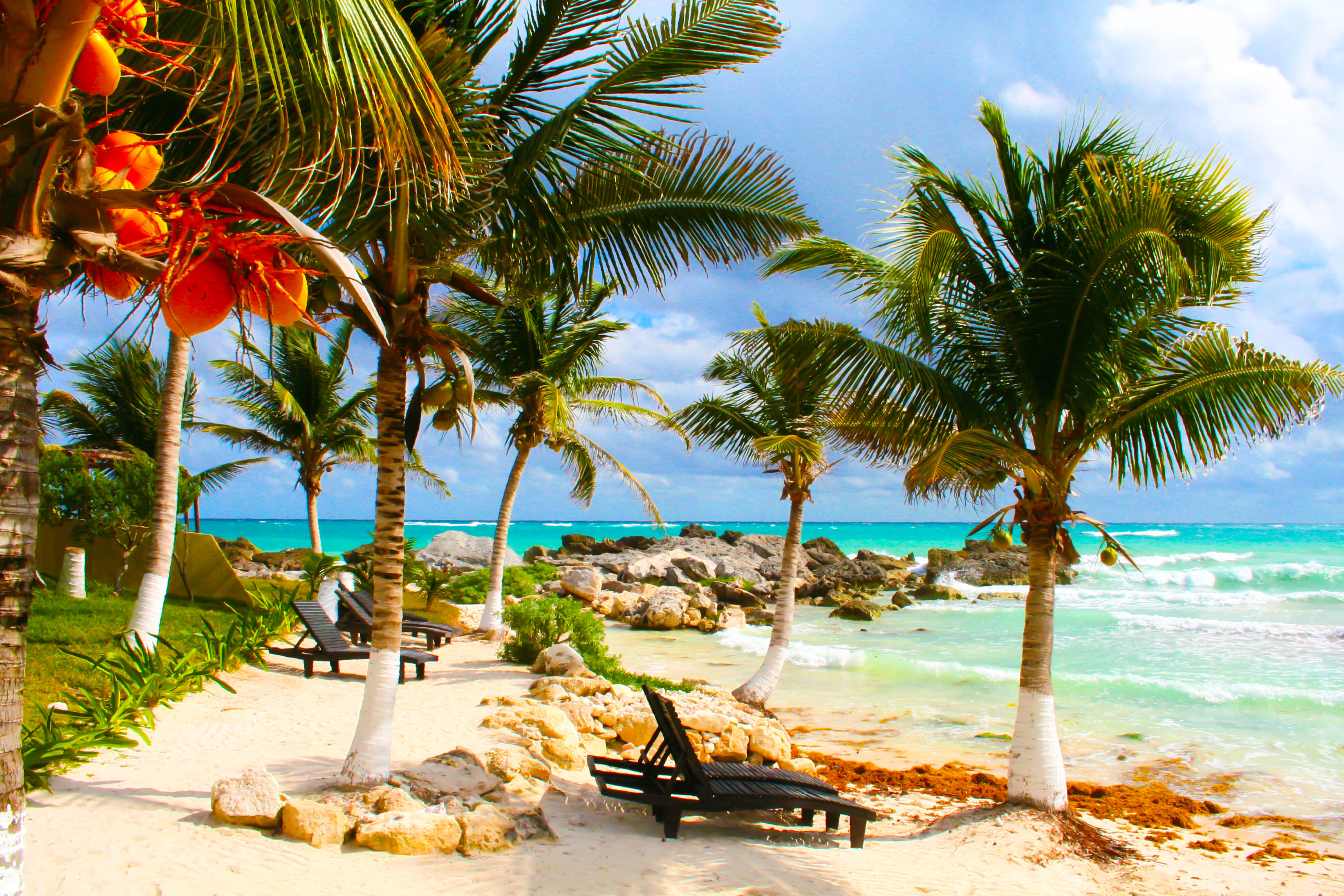 Mauritius  Sterne Hotel Und Flug
