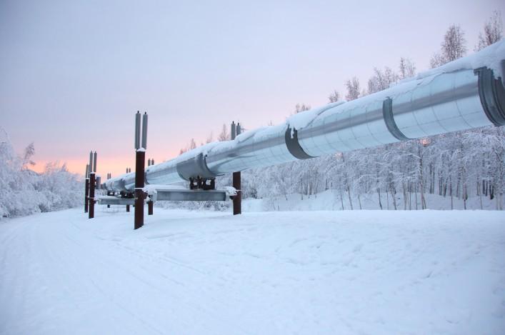Schutz Arktis